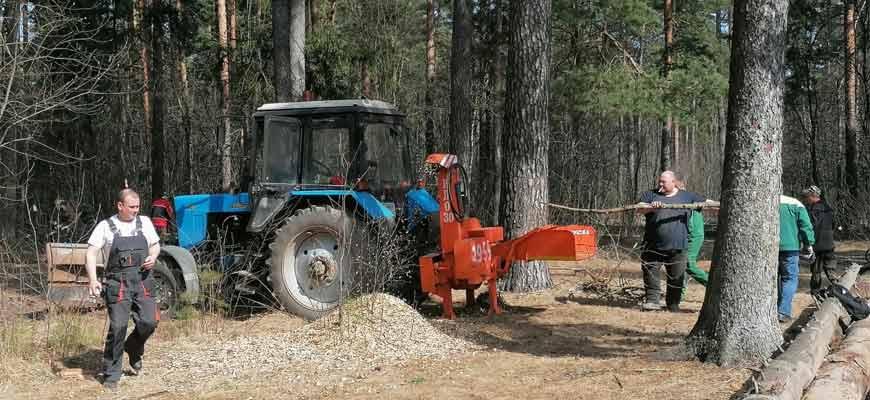Санитарная вырубка в лесопарковой зоне «Стрелки» в Орехово-Зуеве